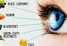 Best Foods for Eyes