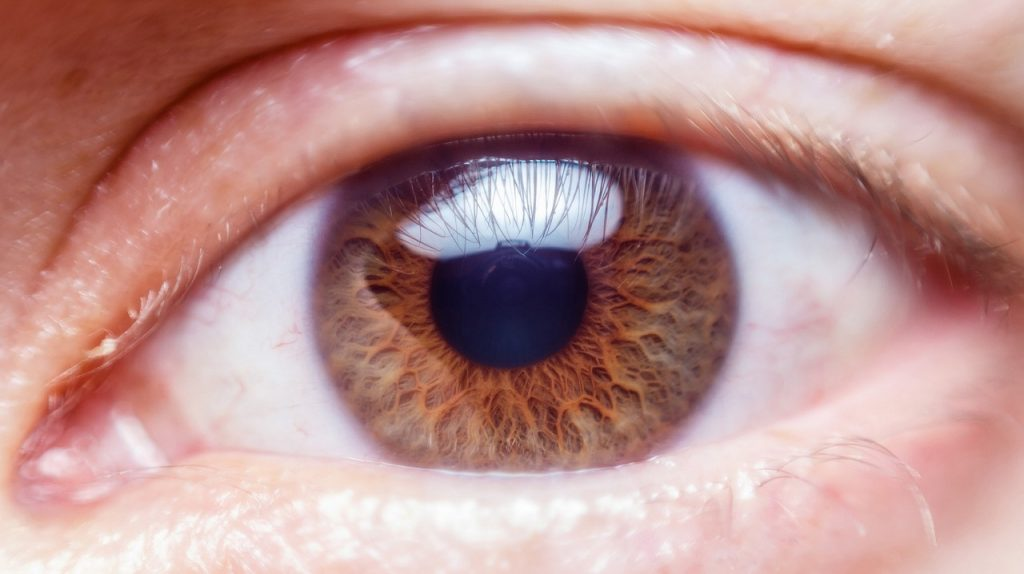 causes of blurred vision, 5 Causes of Blurred Vision That You Should Know About